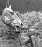 Arne Högsander og hestehoved